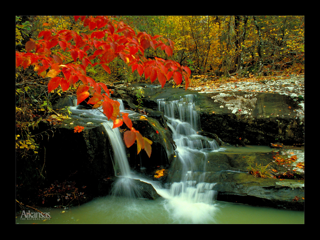 Wallpaper download nature beauty - Download This View Natural Beauty Cossatot River Wallpaper Download Picture