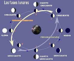 La fases Lunares !