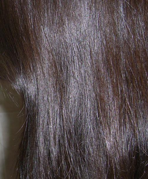Blushed Wombat Dariya Salon De Pro Hair Color Bubble