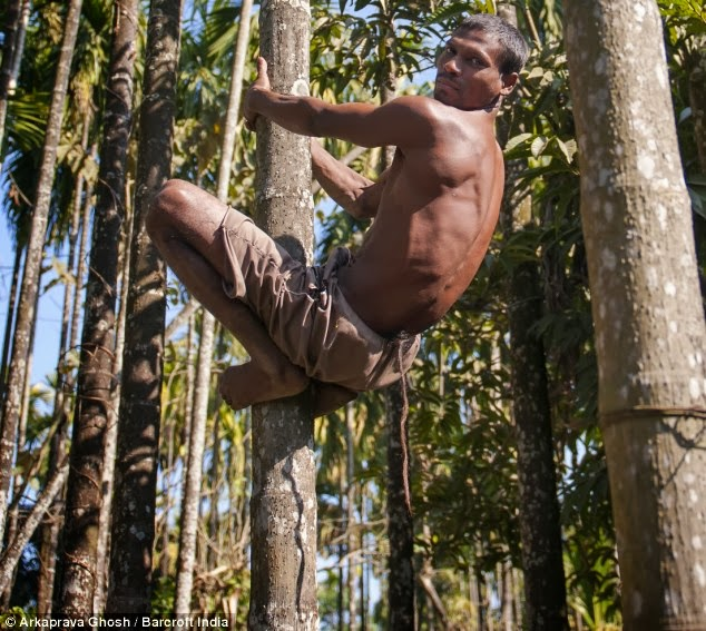 Indian Worshipped As Monkey God Because He Has Grown A14-inch TAIL