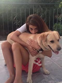 Χάθηκε στην περιοχή Μποζαιτικα της Πάτρας καθαρόαιμο αρσενικό λαμπραντορ, 2 χρονων
