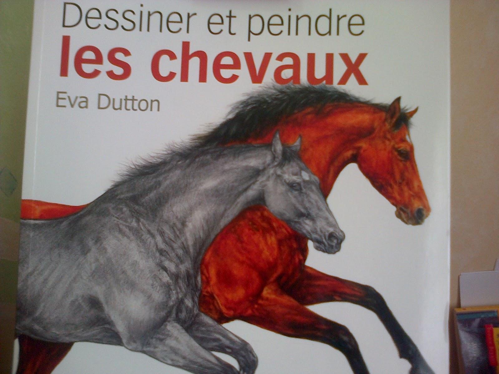 Passion cheval dessiner une t te de cheval - Dessiner cheval ...