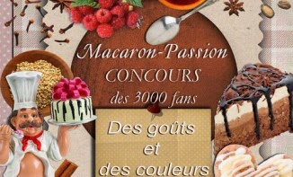 https://www.facebook.com/pages/Macaron-passion/280264982039568?fref=ts