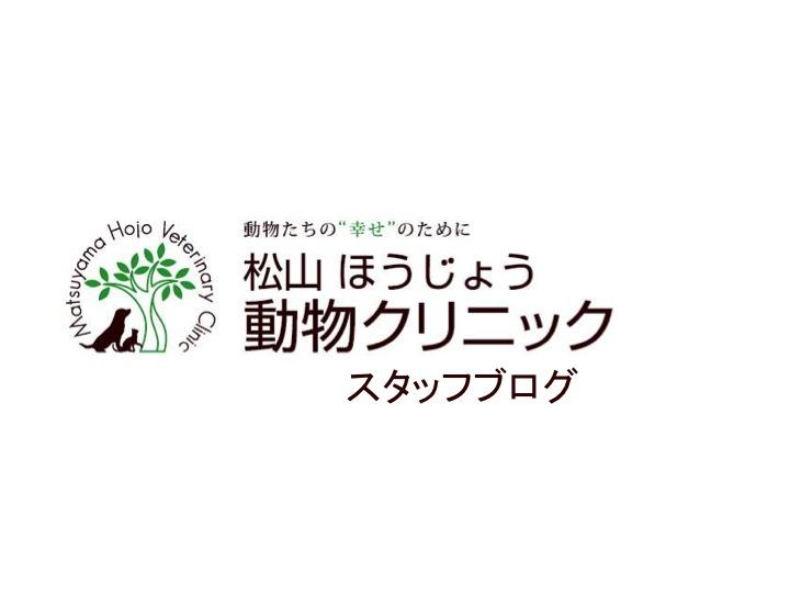 松山 ほうじょう動物クリニック Staff ブログ