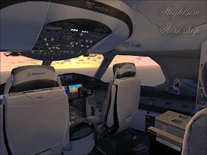 B787-800 VC FSX