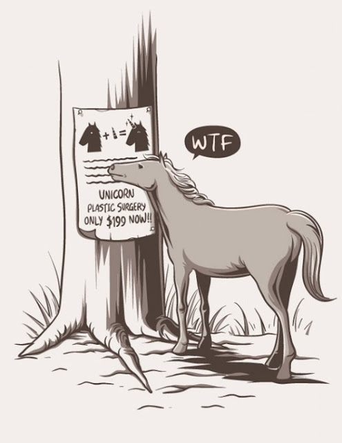 funny horse surgery