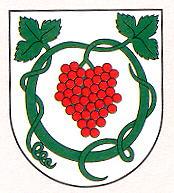 Támogató Királyhelmec Város Önkormányzata