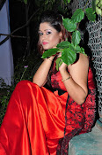 Shilpa Chakravarthy at Appudala Ippudila audio-thumbnail-6