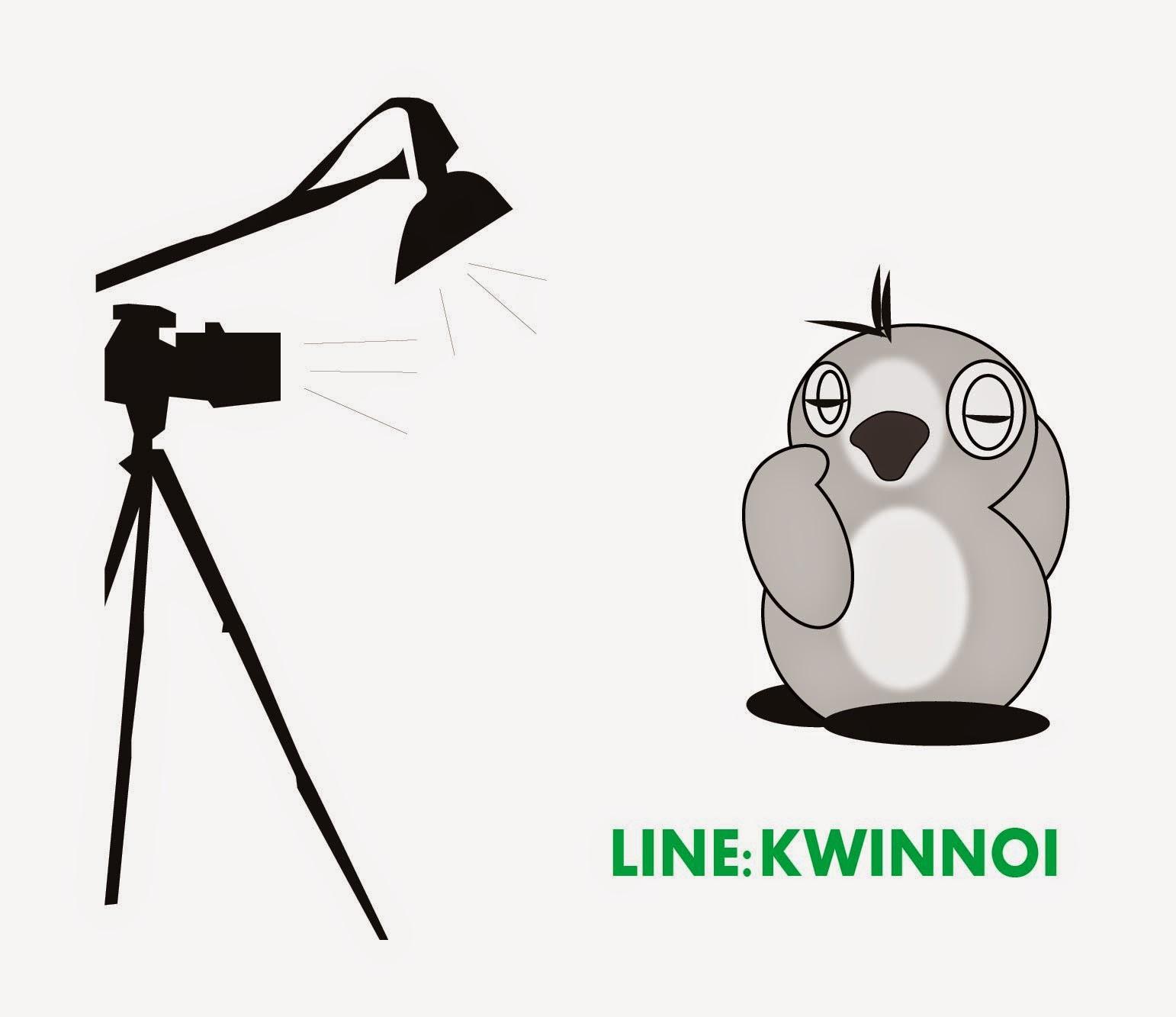 Kwinnoi Line Stickers Store