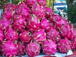http://kotaikan.blogspot.com/2015/02/banyuwangi-menjadi-sentra-buah-naga.html