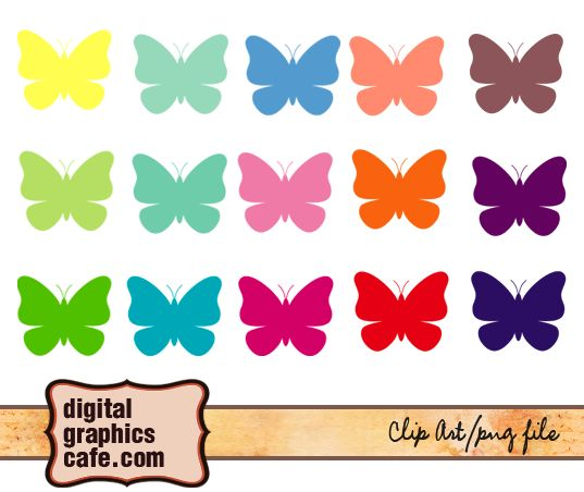 colorful butterflies graphics