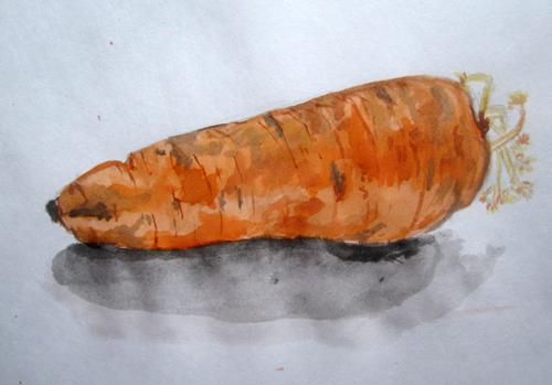 акварельный рисунок морковка