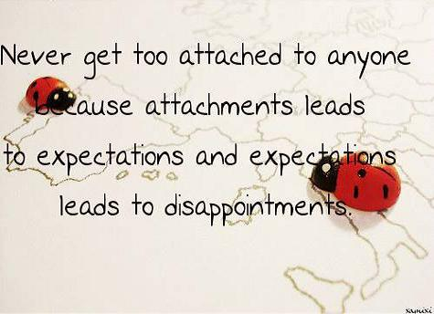 expectations and disappointmnents