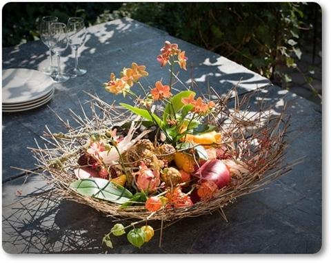 gregor lersch, höstplantering orkide