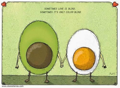 alberto montt avocado egg aguacate huevo mascota avocado