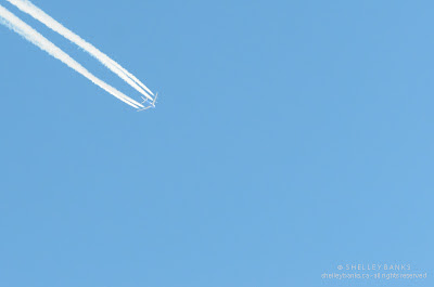 Jet vapour trails: photo © Shelley Banks, all rights reserved.