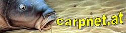 CARPNET
