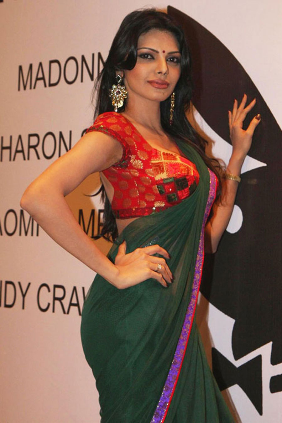 sherlyn chopra in saree glamour  images