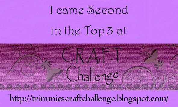 2e bij C.R.A.F.T. Challenge