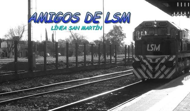 AMIGOS DE LSM