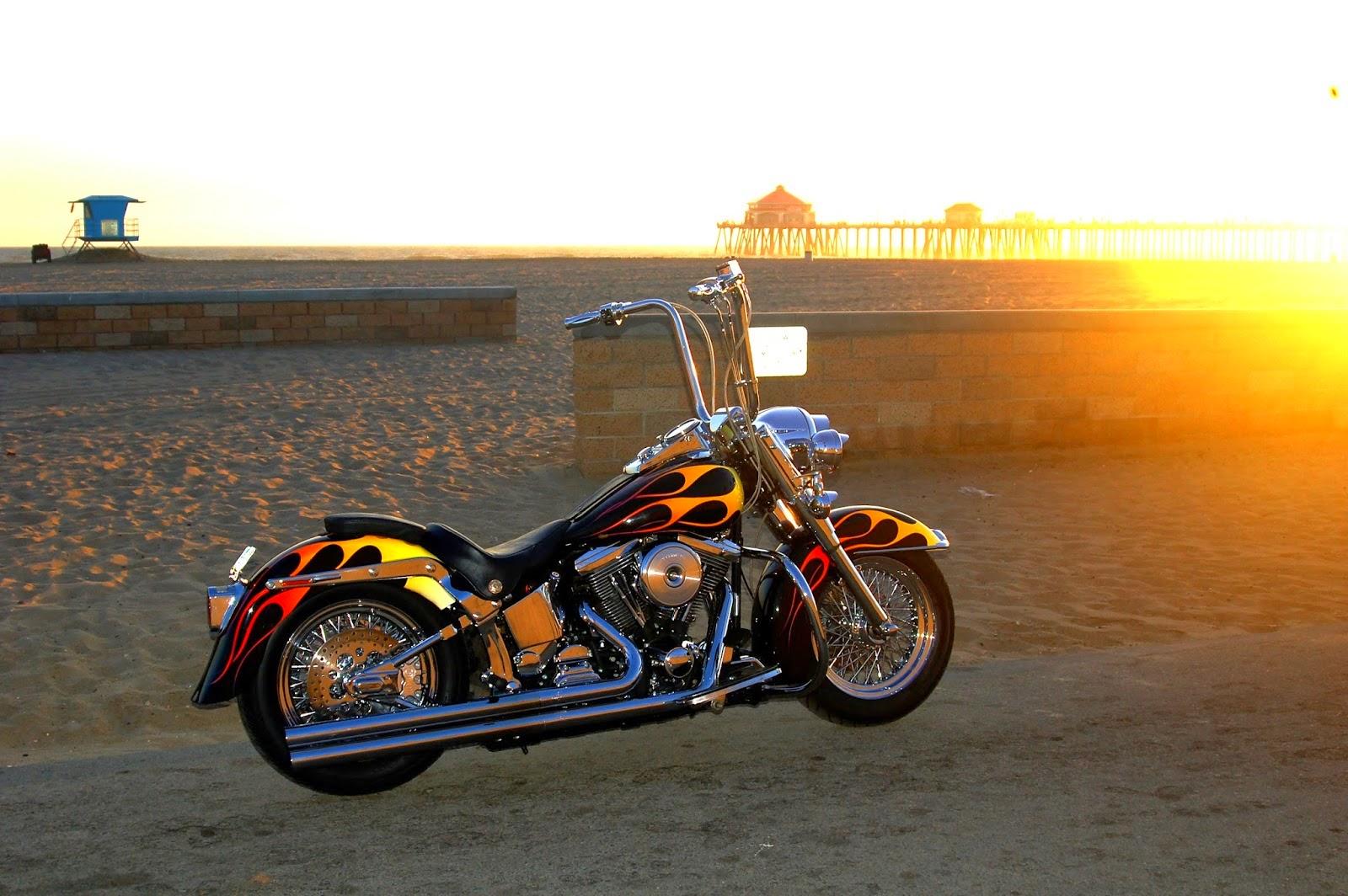 Brock Chobar 1989 Harley Heritage Softail Custom