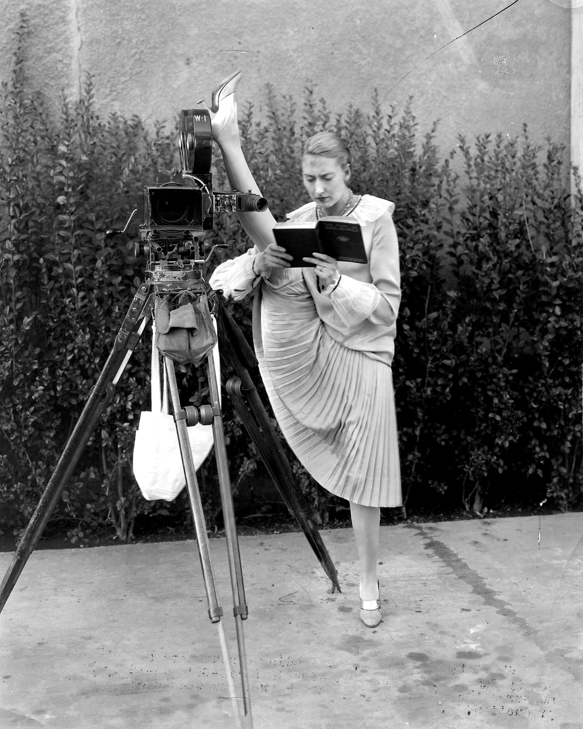 Public domain photo.