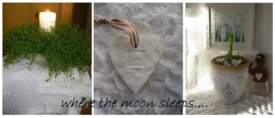 where the moon sleeps