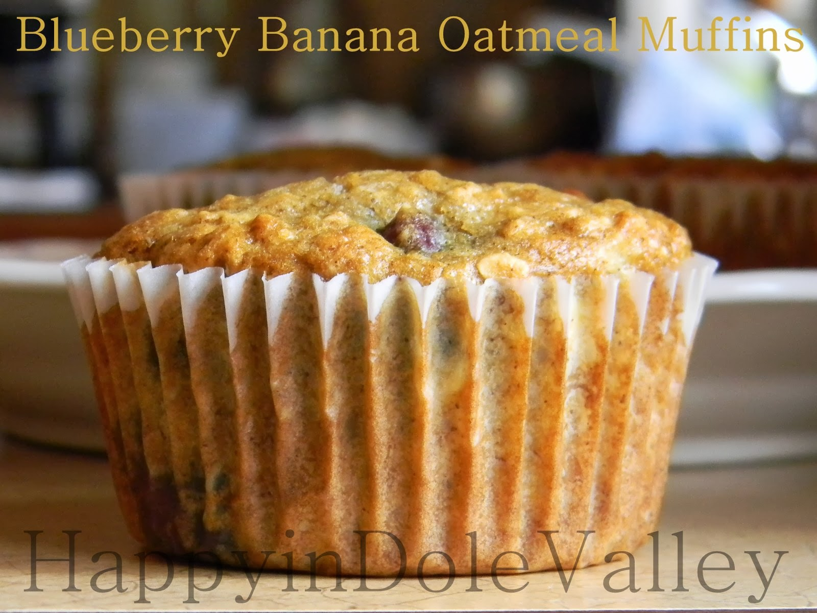 Happy in Dole Valley: Blueberry Banana Oatmeal Muffins {Muffin Monday}