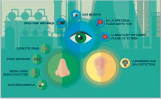 human sensory gas detection