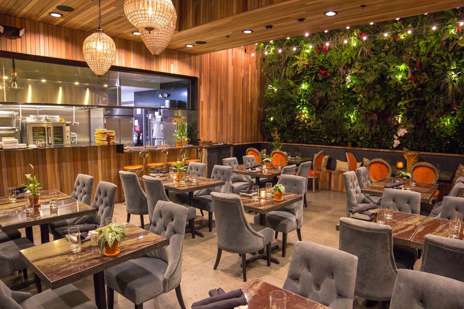 Similar To The Original Pacific Beach Location On Lamont St., The Patio On  Goldfinch Is A Cozy, Unique And Fun Place To Enjoy Craft Cocktails, An  Extensive ...