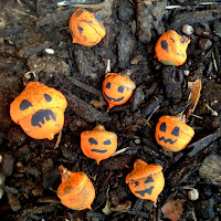 Acorn Jack-o-lanterns