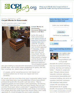 Carpet in Basements: 3rd Most Popular Article!