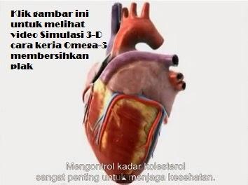 simulasi_omega 3