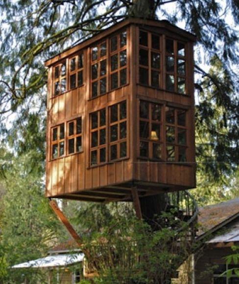 Une cabane luxueuse dans les arbres initiales gg - La cabane de mes reves ...