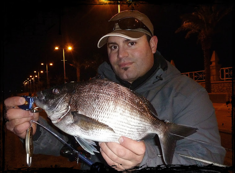 Mi primer sargo a rock fishing