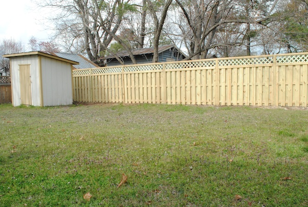 New Backyard Fence : new+backyard+fencejpg