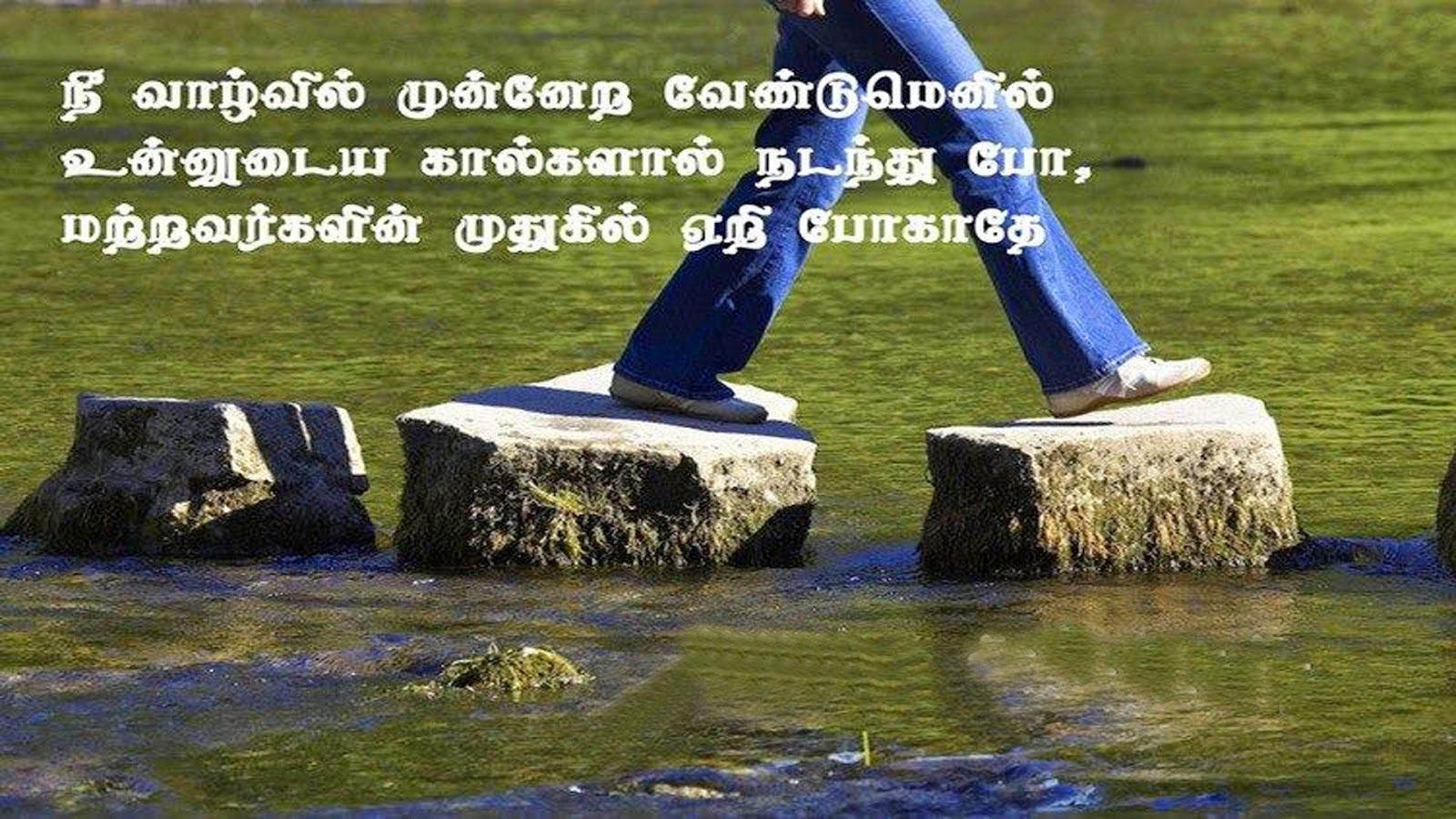 NICE QUOTES: WISDOM THOUGHTS (Tamil)