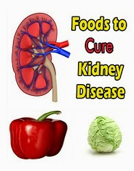 Siruneeragam arokkiyamaaga seyalpada udhavum 10 iyarkkai unavu porutkal | 10 Natural foods that helps for Healthy kidney function