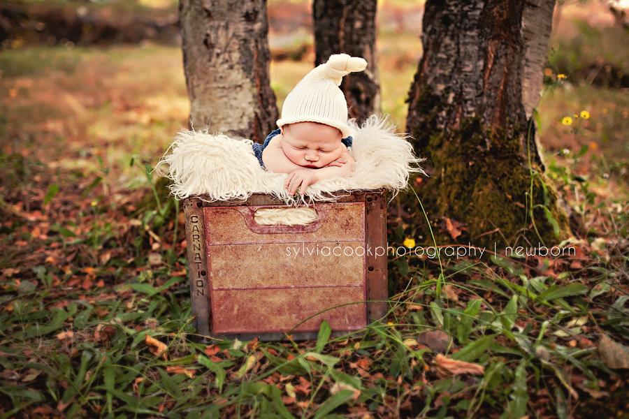 Aiden 4 day old newborn- Bellevue newborn photographer