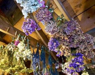 secar flores