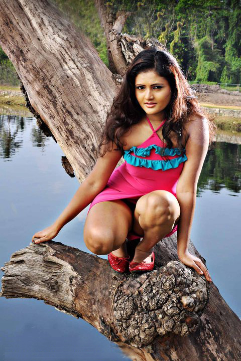 Photos of sri lankan actress ameesha kavindi sri lankan for Hot blog photos