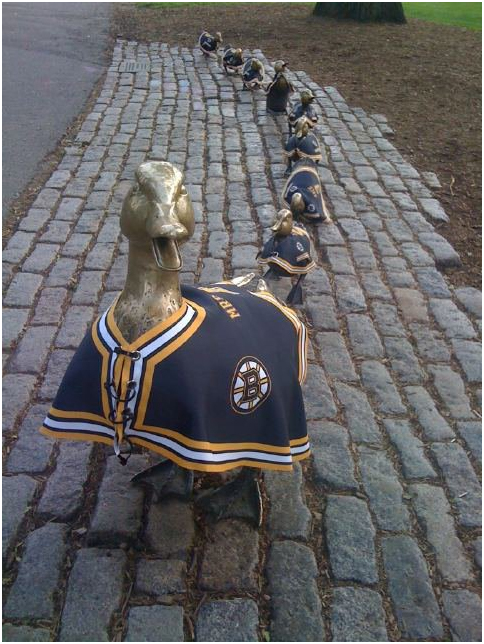 boston statues make way for ducklings with boston bruins shirts on