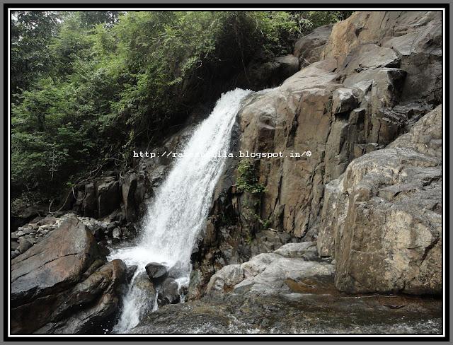 Save Western Ghat