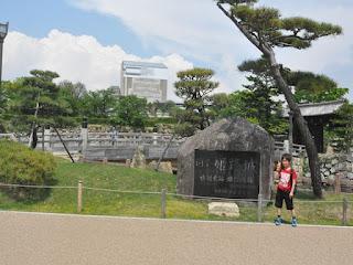 姫路城(素屋根)