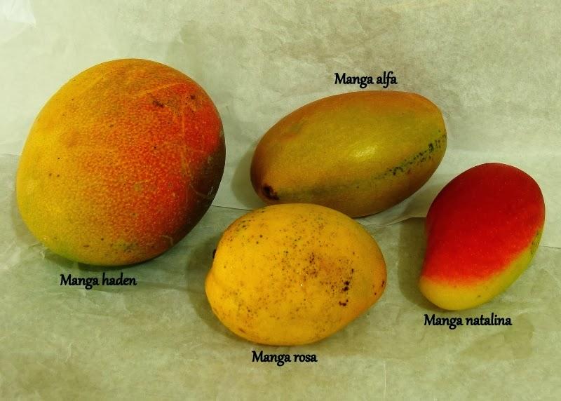 Coisas c de casa manga a fruta ex tica mais brasileira for Tipos de manga japones