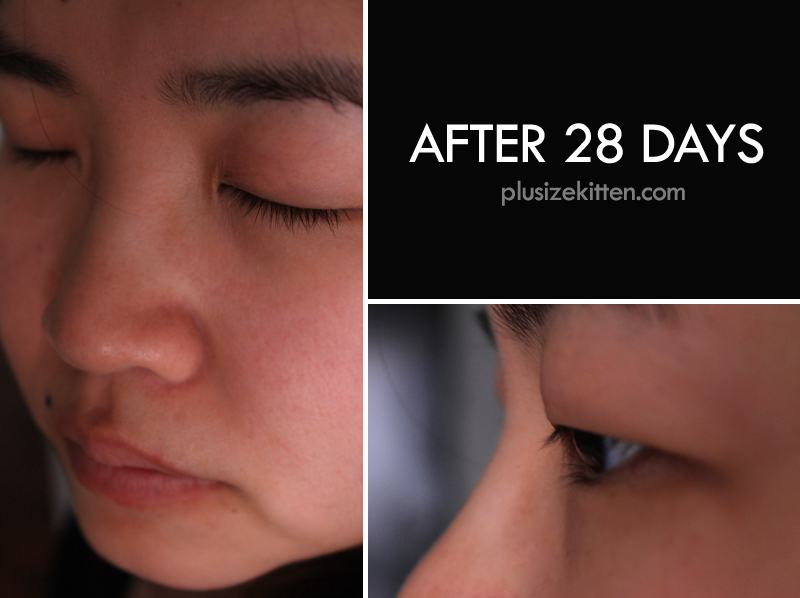 Plus Size Kitten Talika Lipocils Black And My Lipocils 28 Days