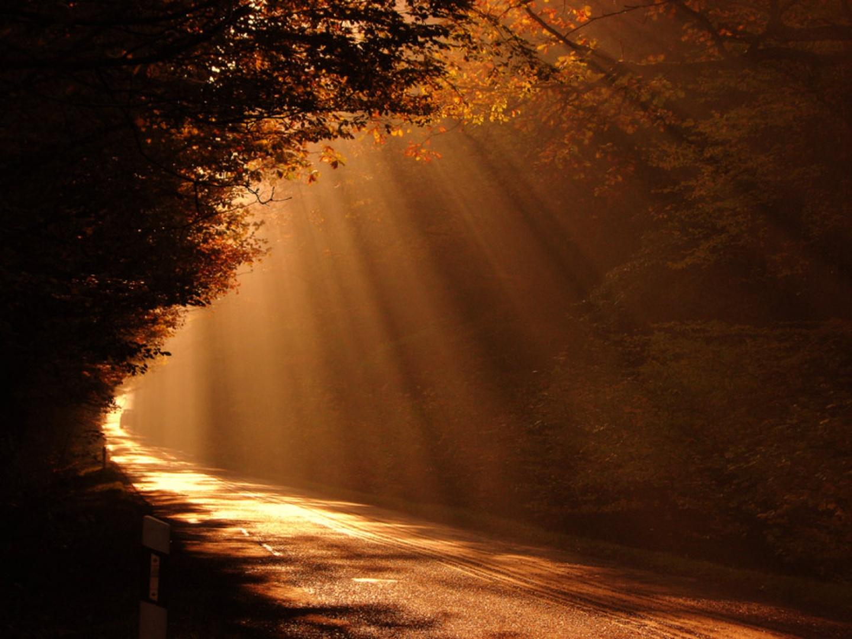 todos elegimos constantemente el camino que vamos a tomar la vida esta ...