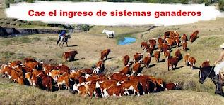 Plan Agropecuario