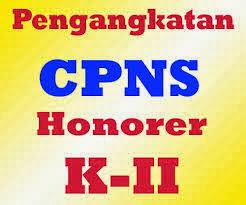 Hasil Tes CPNS Honorer K2 2013