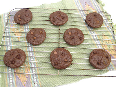 http://blog.dollhousebakeshoppe.com/2011/12/magic-flourless-chocolate-cookies-low.html